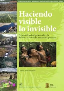 Peru Report large